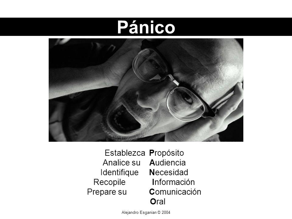 Alejandro Esganian © 2004 Establezca Propósito Analice su Audiencia Identifique Necesidad Recopile Información Prepare su Comunicación Oral Pánico