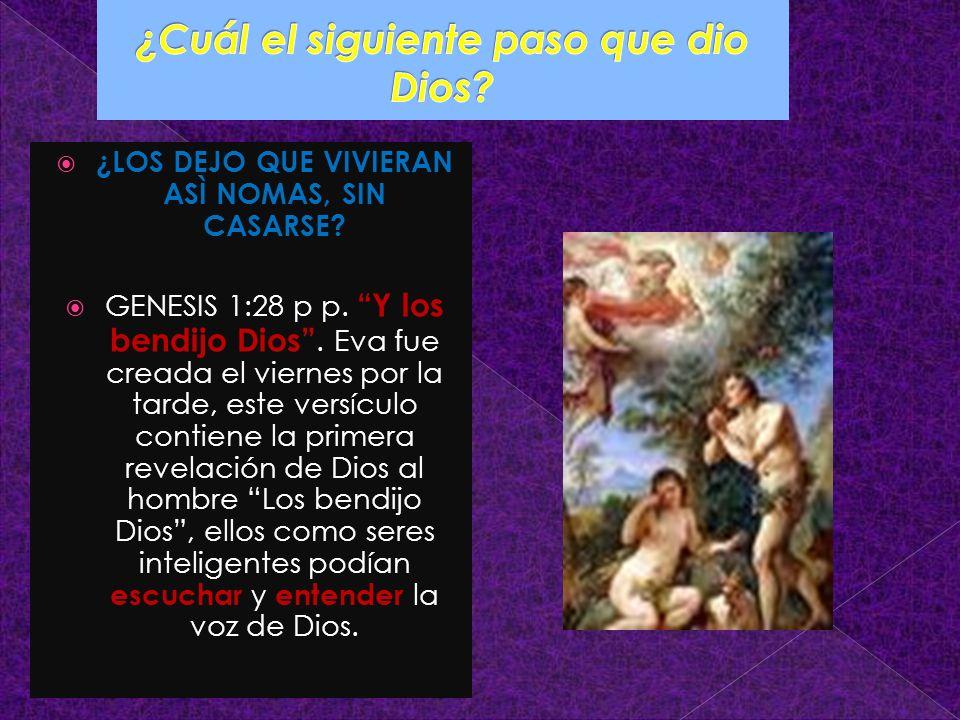 ¿LOS DEJO QUE VIVIERAN ASÌ NOMAS, SIN CASARSE? GENESIS 1:28 p p. Y los bendijo Dios. Eva fue creada el viernes por la tarde, este versículo contiene l