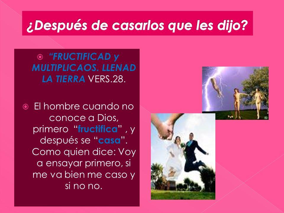 FRUCTIFICAD y MULTIPLICAOS. LLENAD LA TIERRA VERS.28. El hombre cuando no conoce a Dios, primero fructifica, y después se casa. Como quien dice: Voy a