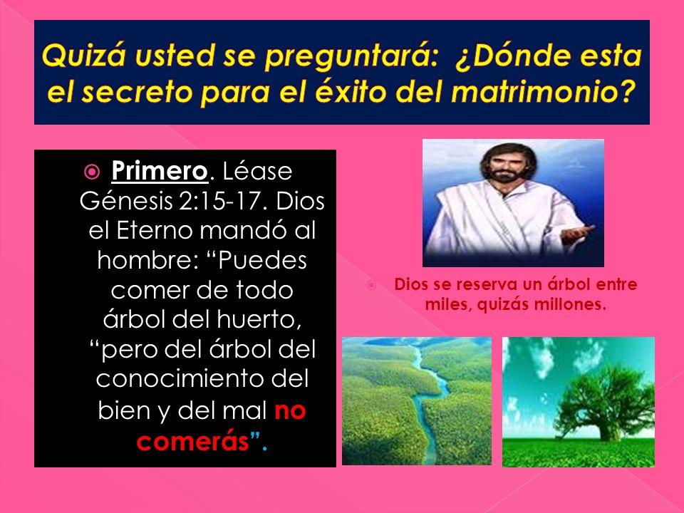 Primero. Léase Génesis 2:15-17. Dios el Eterno mandó al hombre: Puedes comer de todo árbol del huerto, pero del árbol del conocimiento del bien y del