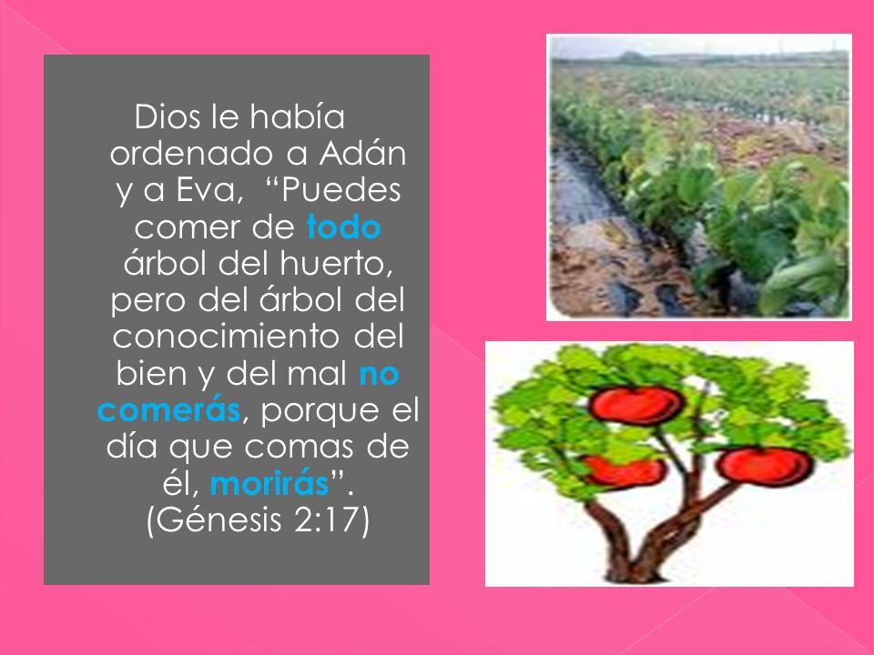 Dios le había ordenado a Adán y a Eva, Puedes comer de todo árbol del huerto, pero del árbol del conocimiento del bien y del mal no comerás, porque el