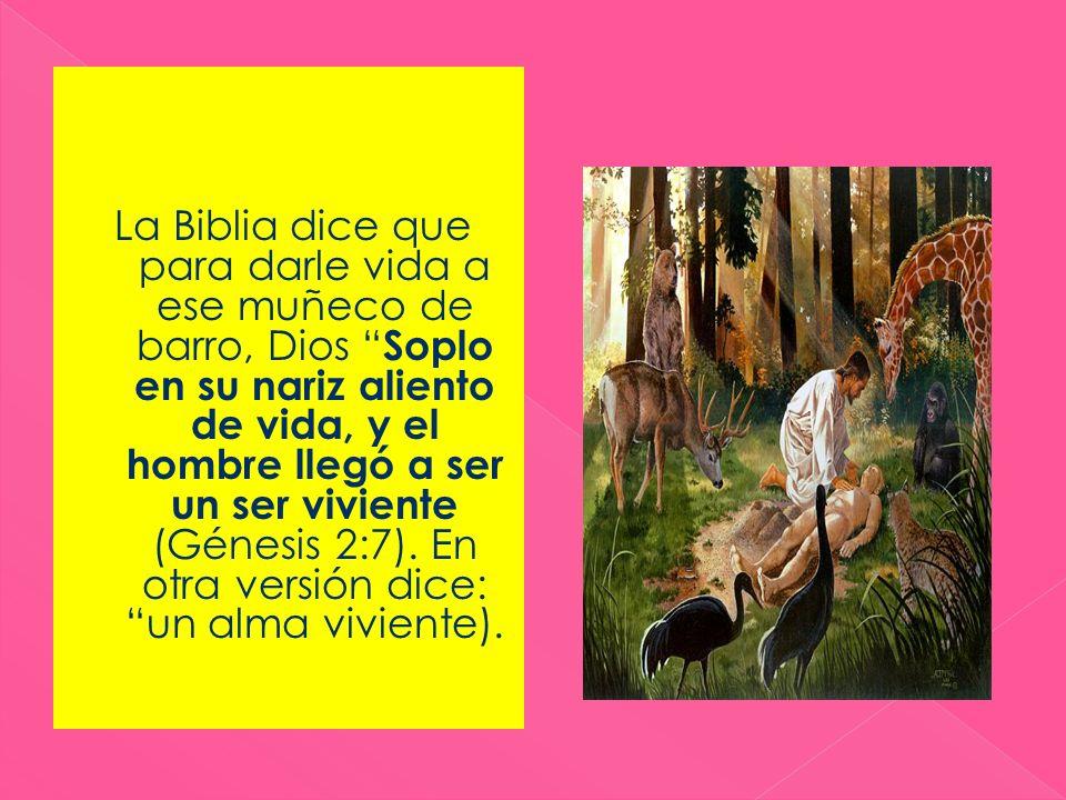 Cuando la mujer decide unirse a Cristo, Él le dice: 1) No se afane por la comida, la bebida, o el vestido.