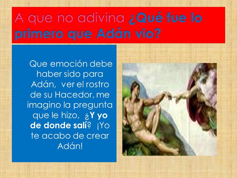 Que emoción debe haber sido para Adán, ver el rostro de su Hacedor, me imagino la pregunta que le hizo, ¿ Y yo de donde salí ? ¡Yo te acabo de crear A