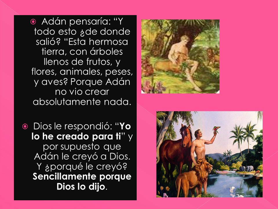 Adán pensaría: Y todo esto ¿de donde salió? Esta hermosa tierra, con árboles llenos de frutos, y flores, animales, peses, y aves? Porque Adán no vio c