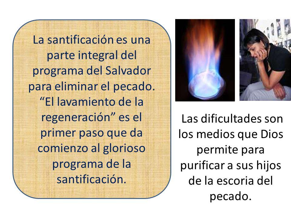 La santificación es una parte integral del programa del Salvador para eliminar el pecado.