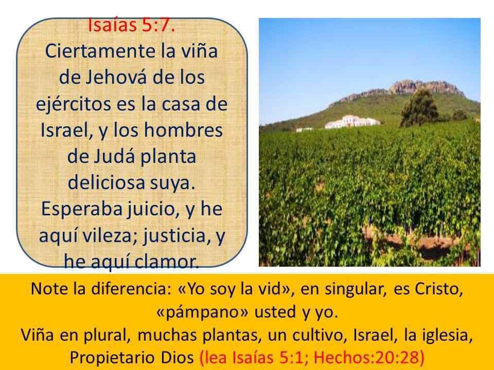 Isaías 5:7.