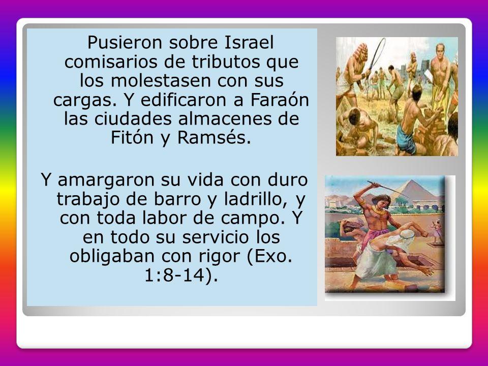 Pusieron sobre Israel comisarios de tributos que los molestasen con sus cargas. Y edificaron a Faraón las ciudades almacenes de Fitón y Ramsés. Y amar