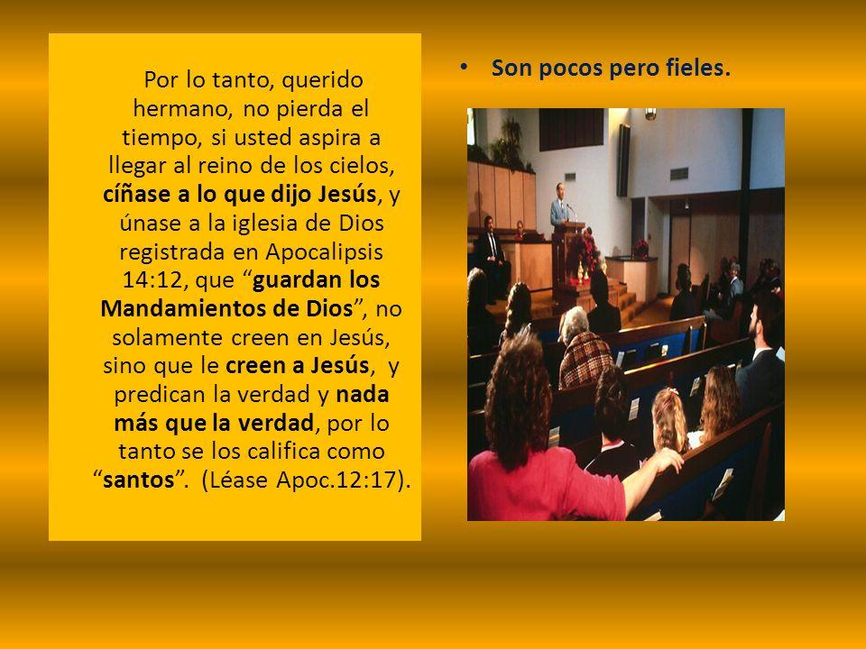 Por lo tanto, querido hermano, no pierda el tiempo, si usted aspira a llegar al reino de los cielos, cíñase a lo que dijo Jesús, y únase a la iglesia