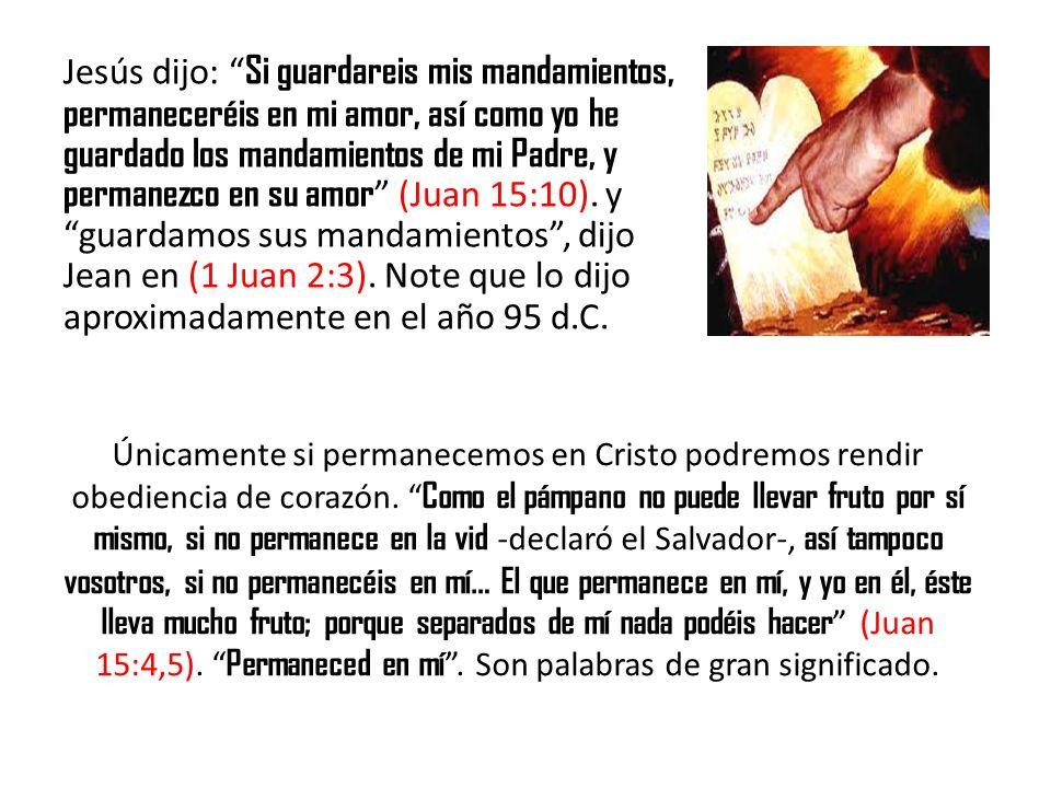 Jesús dijo: Si guardareis mis mandamientos, permaneceréis en mi amor, así como yo he guardado los mandamientos de mi Padre, y permanezco en su amor (J