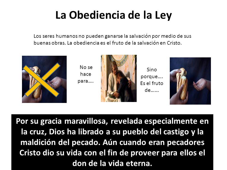 La Obediencia de la Ley Los seres humanos no pueden ganarse la salvación por medio de sus buenas obras. La obediencia es el fruto de la salvación en C