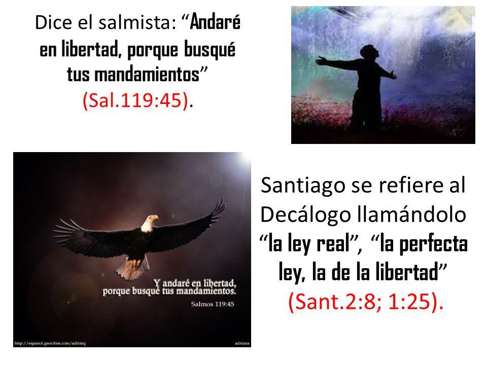 Dice el salmista: Andaré en libertad, porque busqué tus mandamientos (Sal.119:45). Santiago se refiere al Decálogo llamándolo la ley real, la perfecta