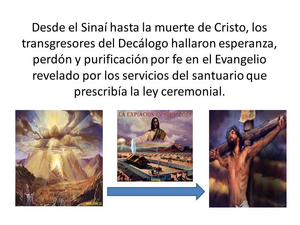 Desde el Sinaí hasta la muerte de Cristo, los transgresores del Decálogo hallaron esperanza, perdón y purificación por fe en el Evangelio revelado por