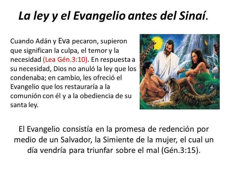 La ley y el Evangelio antes del Sinaí. Cuando Adán y Eva pecaron, supieron que significan la culpa, el temor y la necesidad (Lea Gén.3:10). En respues