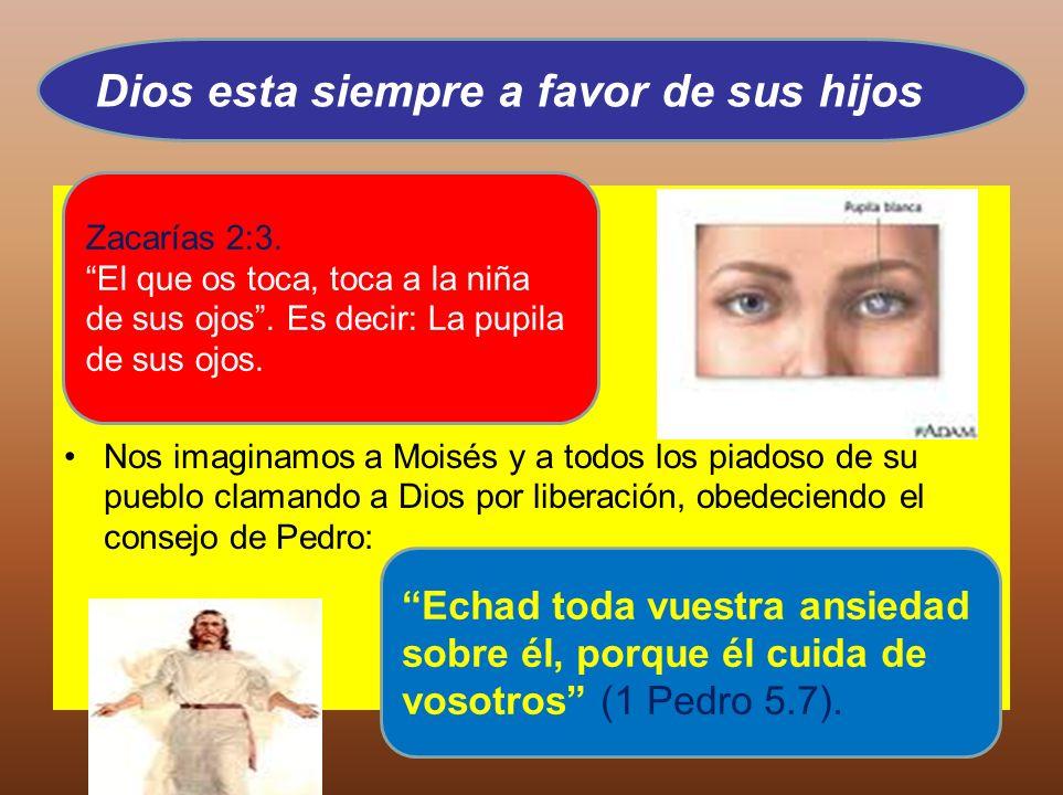 Nos imaginamos a Moisés y a todos los piadoso de su pueblo clamando a Dios por liberación, obedeciendo el consejo de Pedro: Dios esta siempre a favor