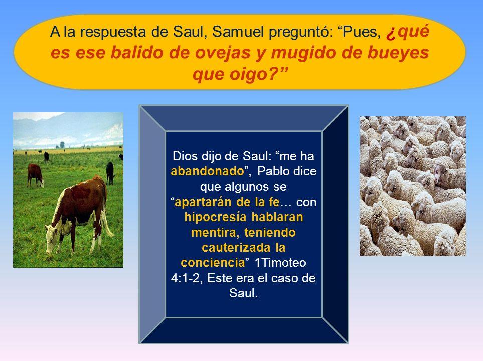 A la respuesta de Saul, Samuel preguntó: Pues, ¿qué es ese balido de ovejas y mugido de bueyes que oigo? Dios dijo de Saul: me ha abandonado, Pablo di