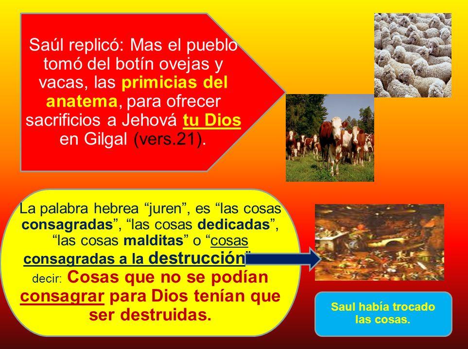 Saúl replicó: Mas el pueblo tomó del botín ovejas y vacas, las primicias del anatema, para ofrecer sacrificios a Jehová tu Dios en Gilgal (vers.21). L