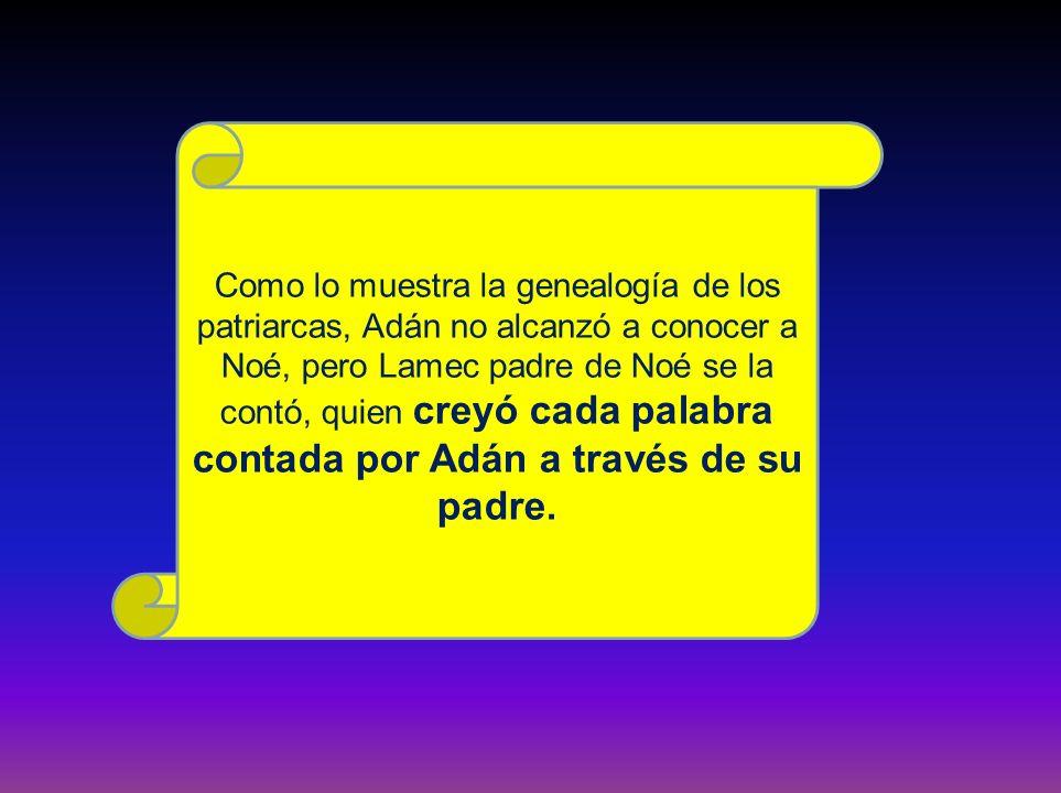 Como lo muestra la genealogía de los patriarcas, Adán no alcanzó a conocer a Noé, pero Lamec padre de Noé se la contó, quien creyó cada palabra contad