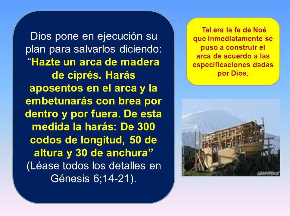 Dios pone en ejecución su plan para salvarlos diciendo:Hazte un arca de madera de ciprés. Harás aposentos en el arca y la embetunarás con brea por den