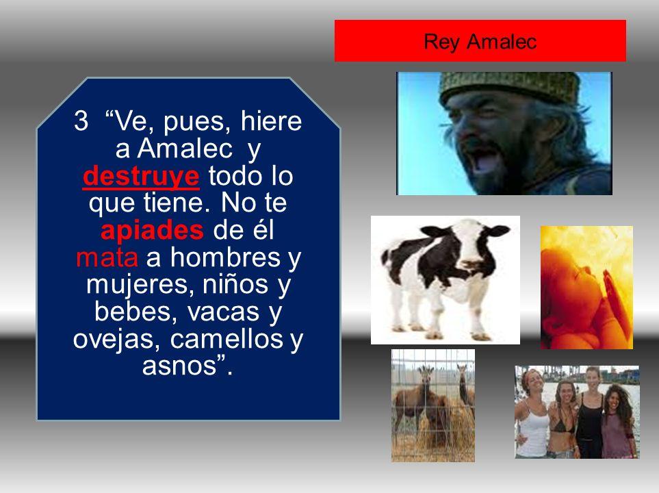 Rey Amalec 3 Ve, pues, hiere a Amalec y destruye todo lo que tiene. No te apiades de él mata a hombres y mujeres, niños y bebes, vacas y ovejas, camel