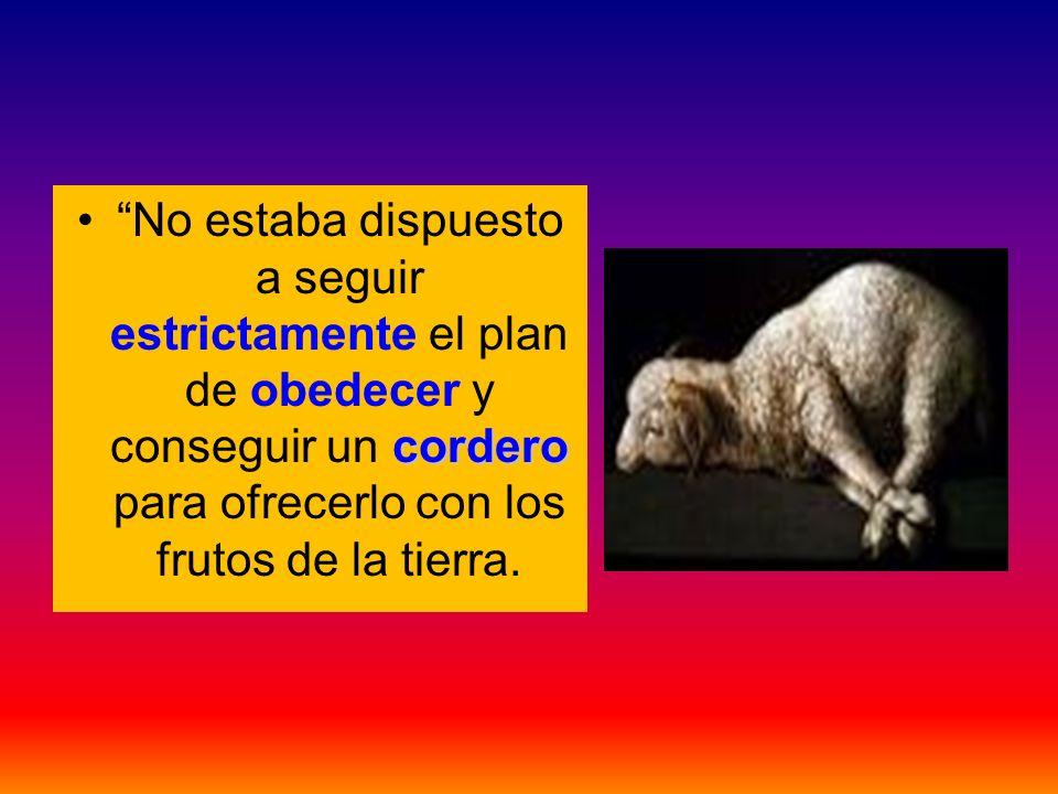 corderoNo estaba dispuesto a seguir estrictamente el plan de obedecer y conseguir un cordero para ofrecerlo con los frutos de la tierra.