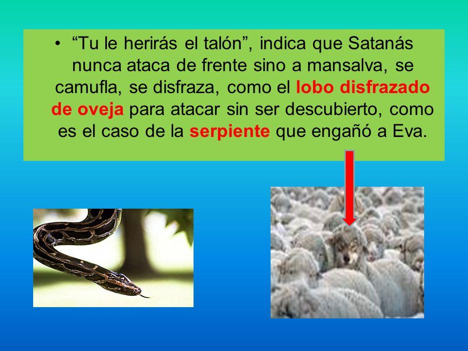 Tu le herirás el talón, indica que Satanás nunca ataca de frente sino a mansalva, se camufla, se disfraza, como el lobo disfrazado de oveja para ataca