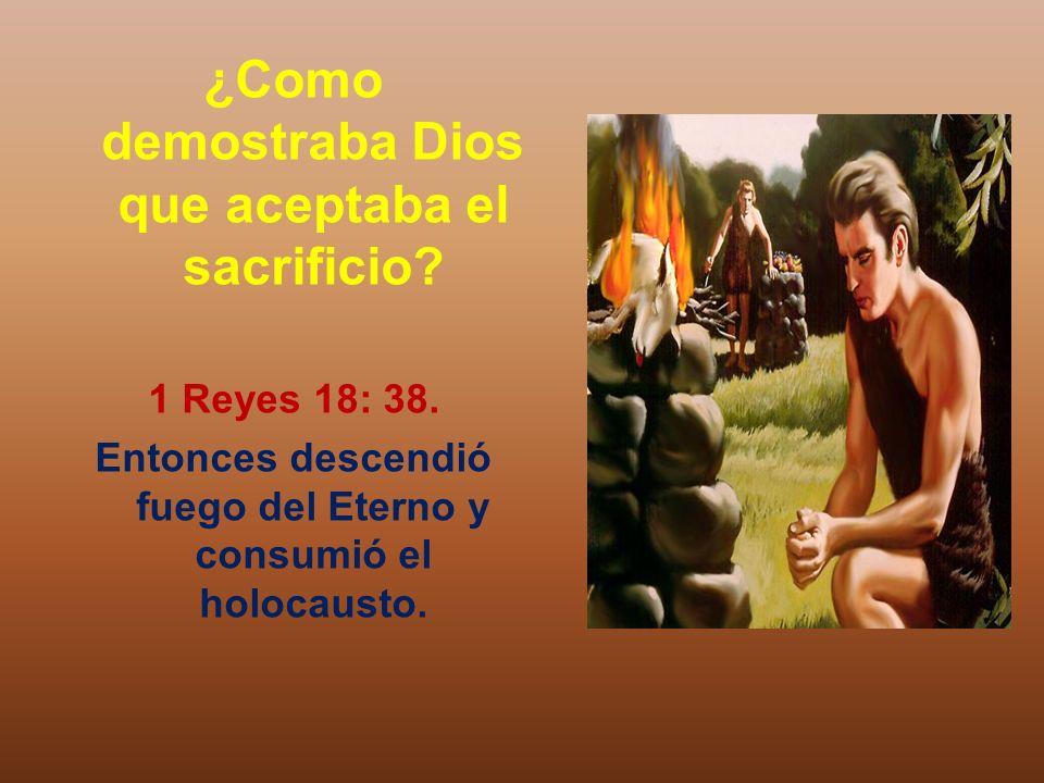 ¿Como demostraba Dios que aceptaba el sacrificio? 1 Reyes 18: 38. Entonces descendió fuego del Eterno y consumió el holocausto.