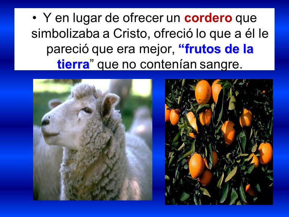 frutos de la tierraY en lugar de ofrecer un cordero que simbolizaba a Cristo, ofreció lo que a él le pareció que era mejor, frutos de la tierra que no