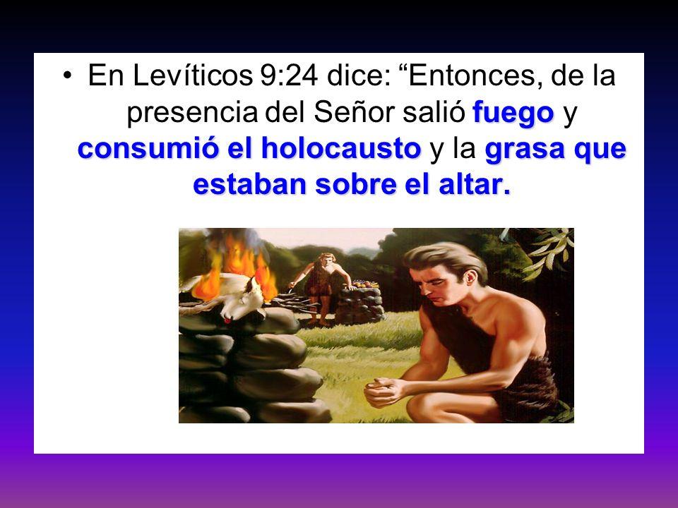 fuego consumió el holocaustograsa que estaban sobre el altar.En Levíticos 9:24 dice: Entonces, de la presencia del Señor salió fuego y consumió el hol
