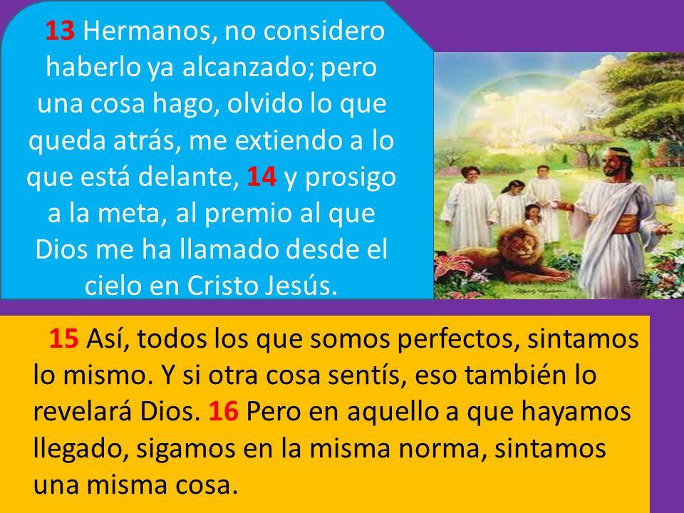 15 Así, todos los que somos perfectos, sintamos lo mismo. Y si otra cosa sentís, eso también lo revelará Dios. 16 Pero en aquello a que hayamos llegad