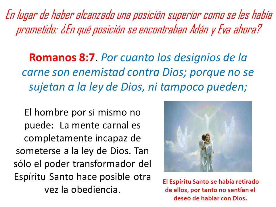 En lugar de haber alcanzado una posición superior como se les había prometido: ¿En qué posición se encontraban Adán y Eva ahora? Romanos 8:7. Por cuan