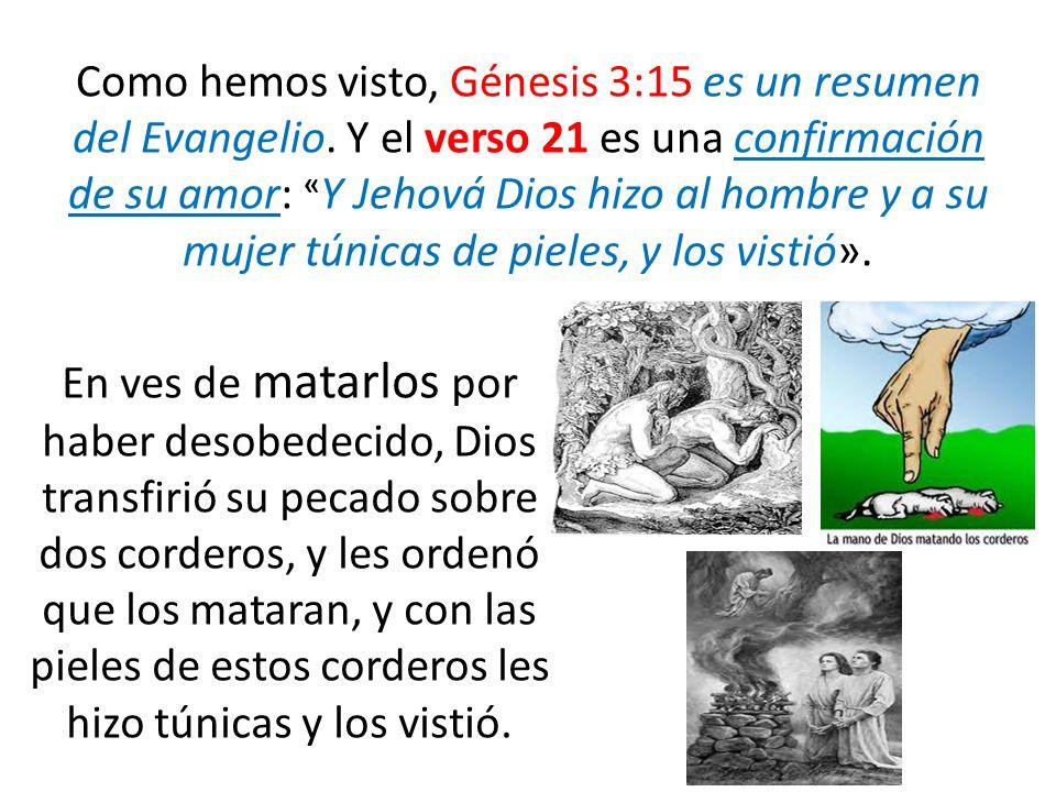 Como hemos visto, Génesis 3:15 es un resumen del Evangelio. Y el verso 21 es una confirmación de su amor: « Y Jehová Dios hizo al hombre y a su mujer