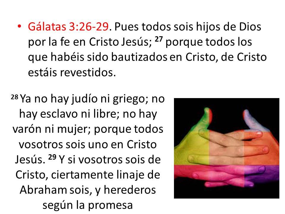 Gálatas 3:26-29. Pues todos sois hijos de Dios por la fe en Cristo Jesús; 27 porque todos los que habéis sido bautizados en Cristo, de Cristo estáis r