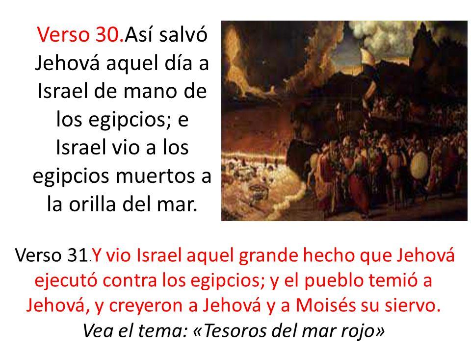 Verso 30.Así salvó Jehová aquel día a Israel de mano de los egipcios; e Israel vio a los egipcios muertos a la orilla del mar. Verso 31. Y vio Israel