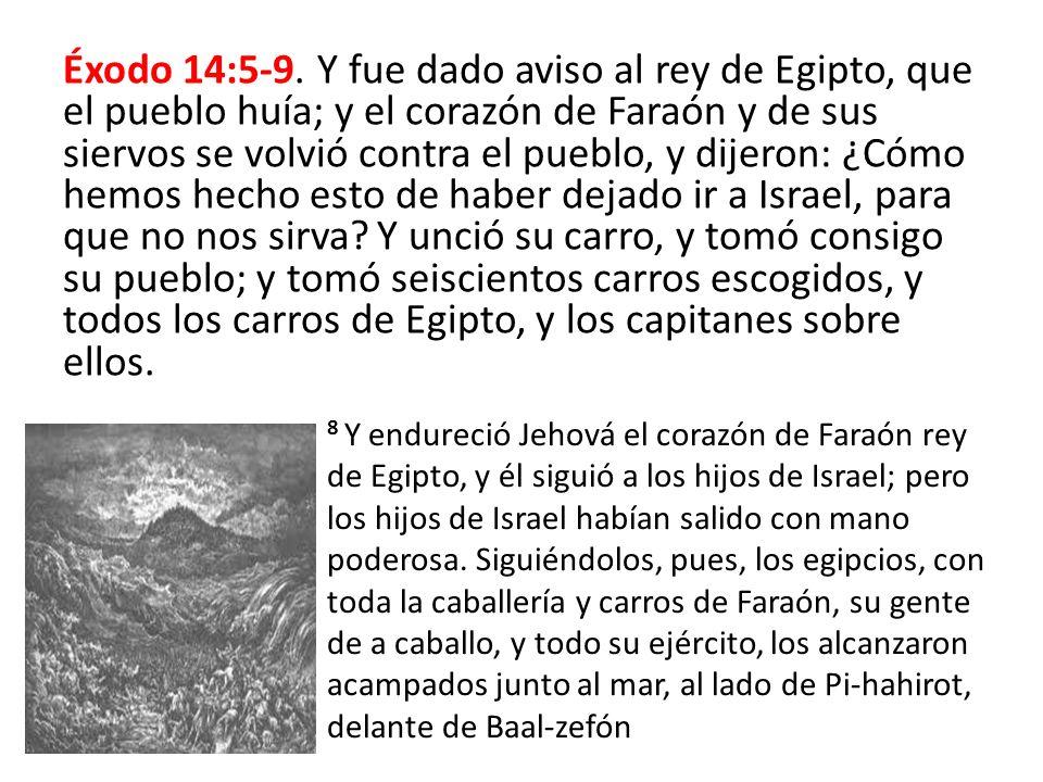 Éxodo 14:5-9. Y fue dado aviso al rey de Egipto, que el pueblo huía; y el corazón de Faraón y de sus siervos se volvió contra el pueblo, y dijeron: ¿C