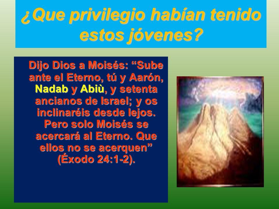 Obedecen fielmente la orden de Dios Después subieron Moisés y Aarón, Nadab y Abiù, y setenta ancianos de Israel (Éxodo 24:9).