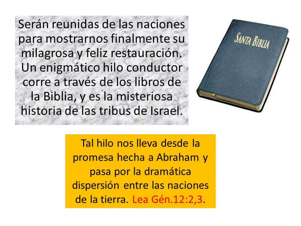 Serán reunidas de las naciones para mostrarnos finalmente su milagrosa y feliz restauración. Un enigmático hilo conductor corre a través de los libros
