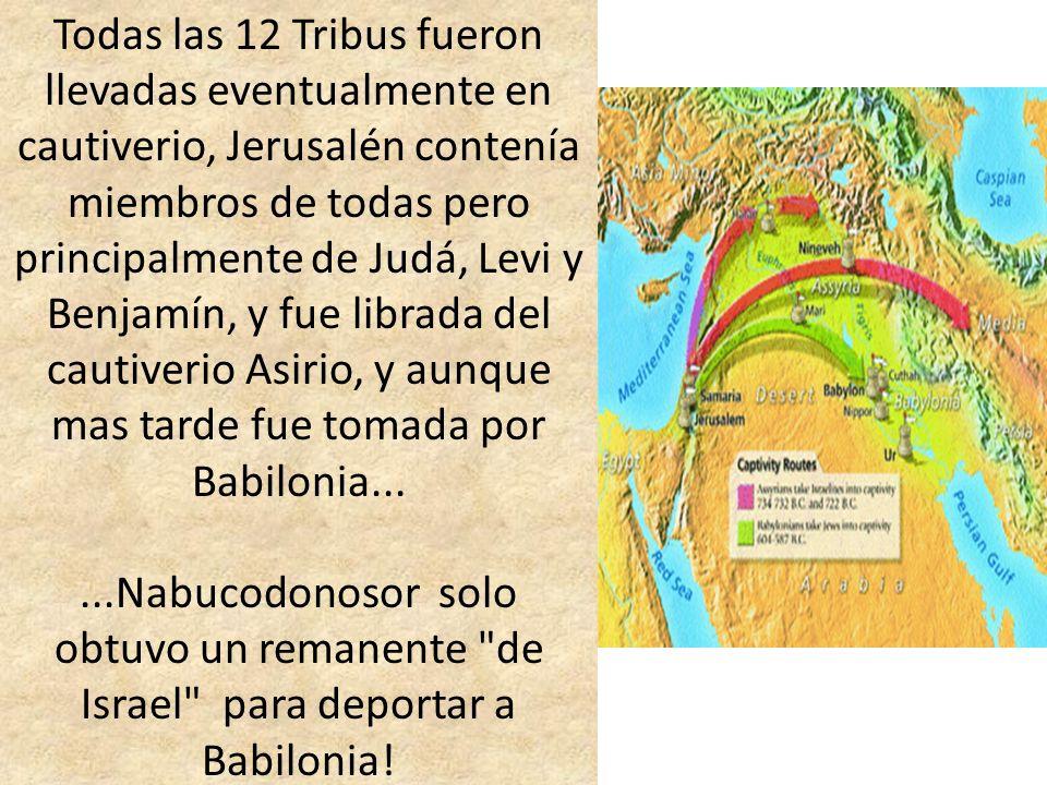 Todas las 12 Tribus fueron llevadas eventualmente en cautiverio, Jerusalén contenía miembros de todas pero principalmente de Judá, Levi y Benjamín, y