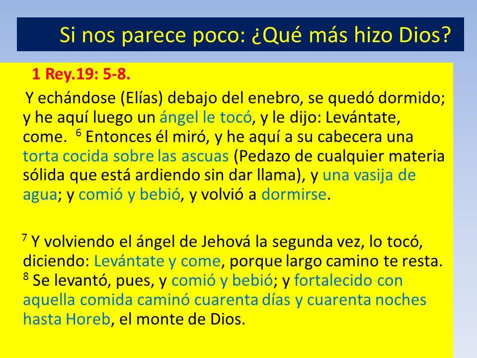 1 Rey.19: 5-8. Y echándose (Elías) debajo del enebro, se quedó dormido; y he aquí luego un ángel le tocó, y le dijo: Levántate, come. 6 Entonces él mi