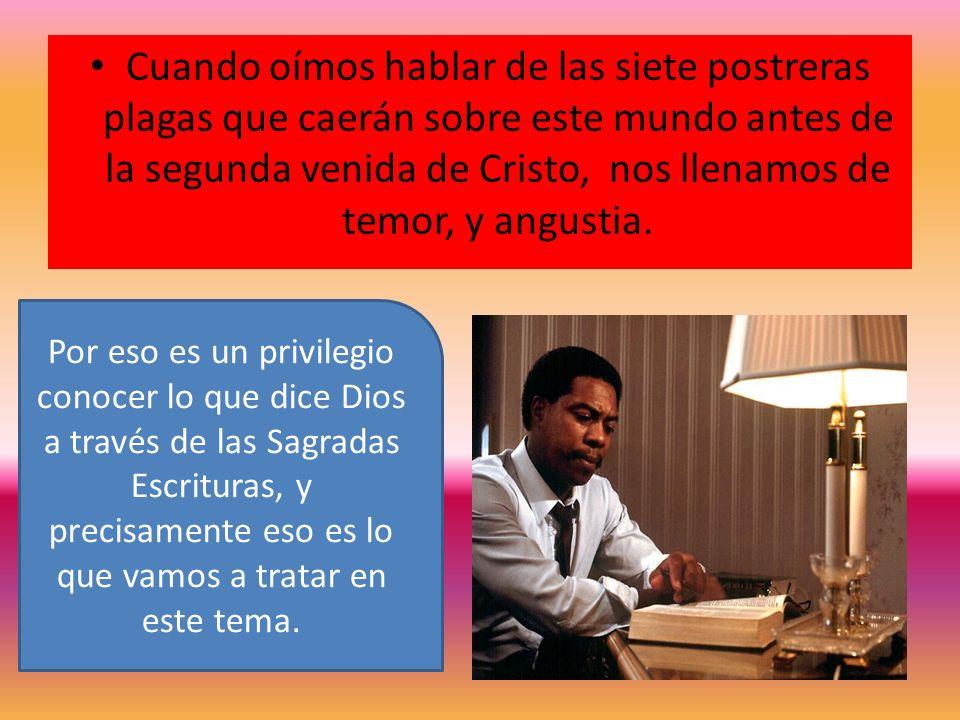 Santiago 2:10 Dice: Porque el que guarda toda la Ley, y ofende en un solo punto, es culpable de todos.
