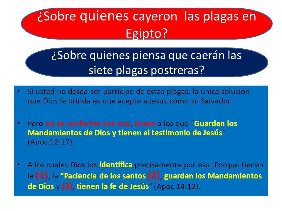 Si usted no desea ser participe de estas plagas, la única solución que Dios le brinda es que acepte a Jesús como su Salvador. Pero no se conforme con