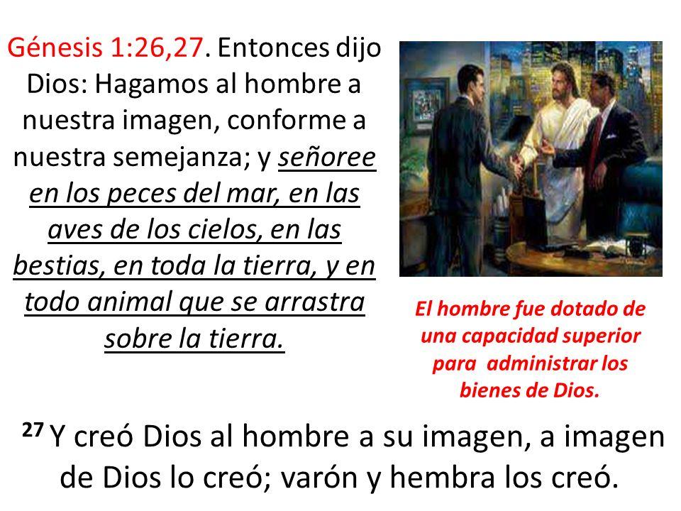 Génesis 1:26,27.
