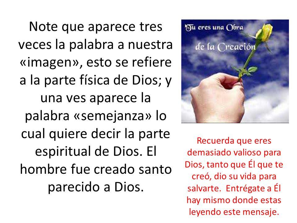 Note que aparece tres veces la palabra a nuestra «imagen», esto se refiere a la parte física de Dios; y una ves aparece la palabra «semejanza» lo cual quiere decir la parte espiritual de Dios.