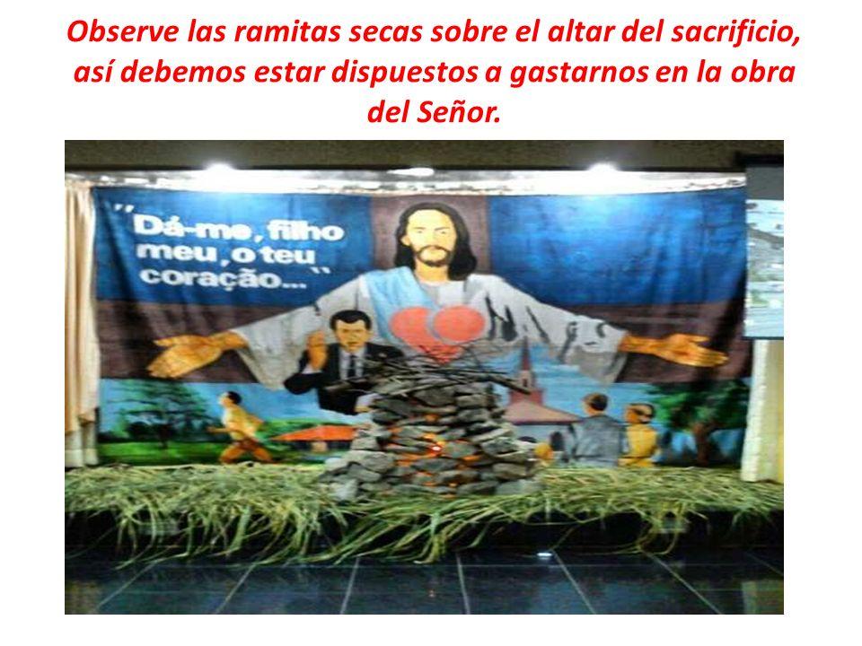 Observe las ramitas secas sobre el altar del sacrificio, así debemos estar dispuestos a gastarnos en la obra del Señor.