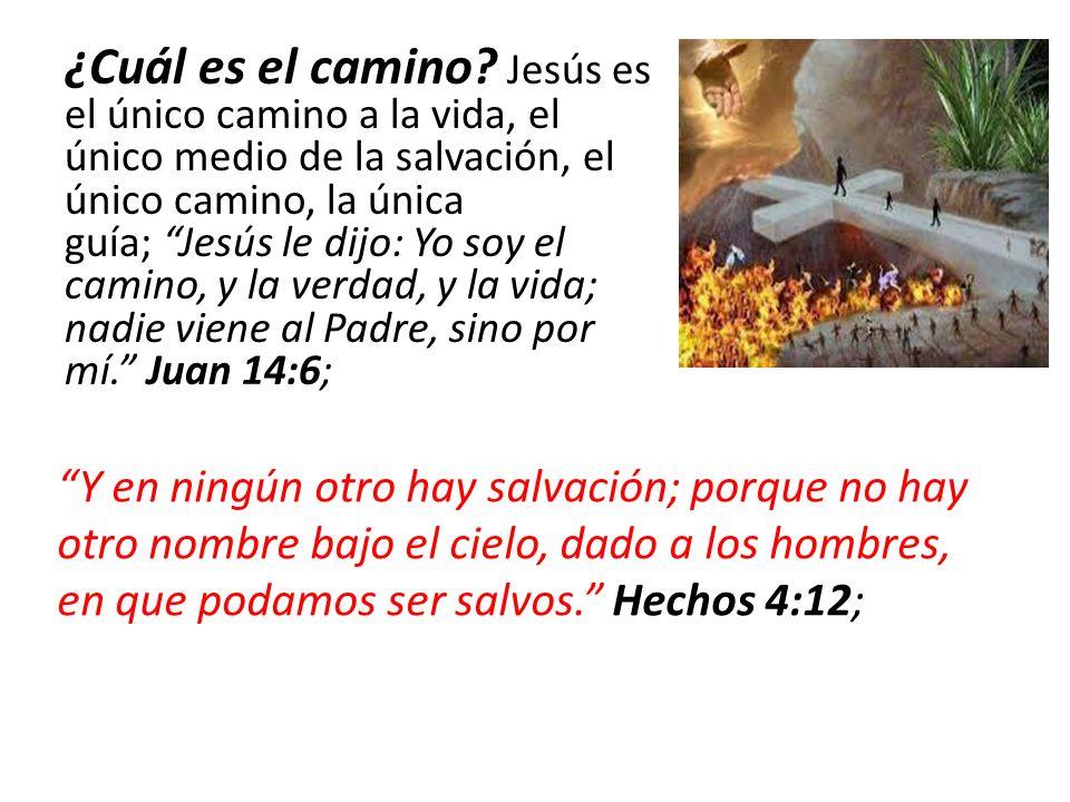 ¿Cuál es el camino? Jesús es el único camino a la vida, el único medio de la salvación, el único camino, la única guía; Jesús le dijo: Yo soy el camin