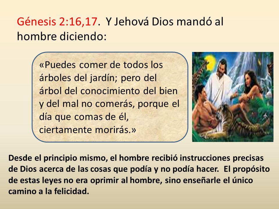 Segundo Mandamiento (parte I) : Éxodo 20:4.