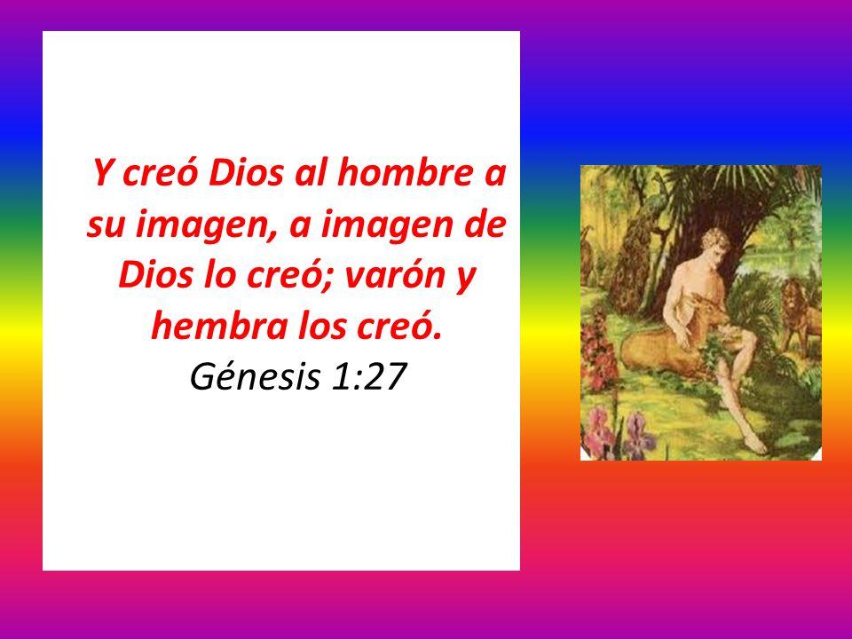 Y creó Dios al hombre a su imagen, a imagen de Dios lo creó; varón y hembra los creó. Génesis 1:27