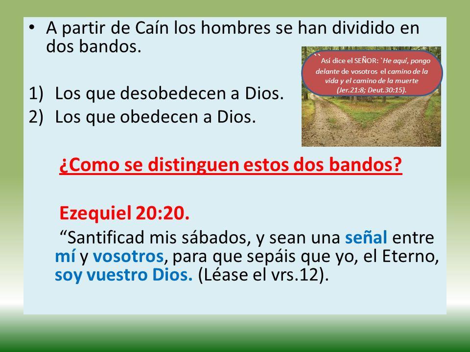 A partir de Caín los hombres se han dividido en dos bandos. 1)Los que desobedecen a Dios. 2)Los que obedecen a Dios. ¿Como se distinguen estos dos ban