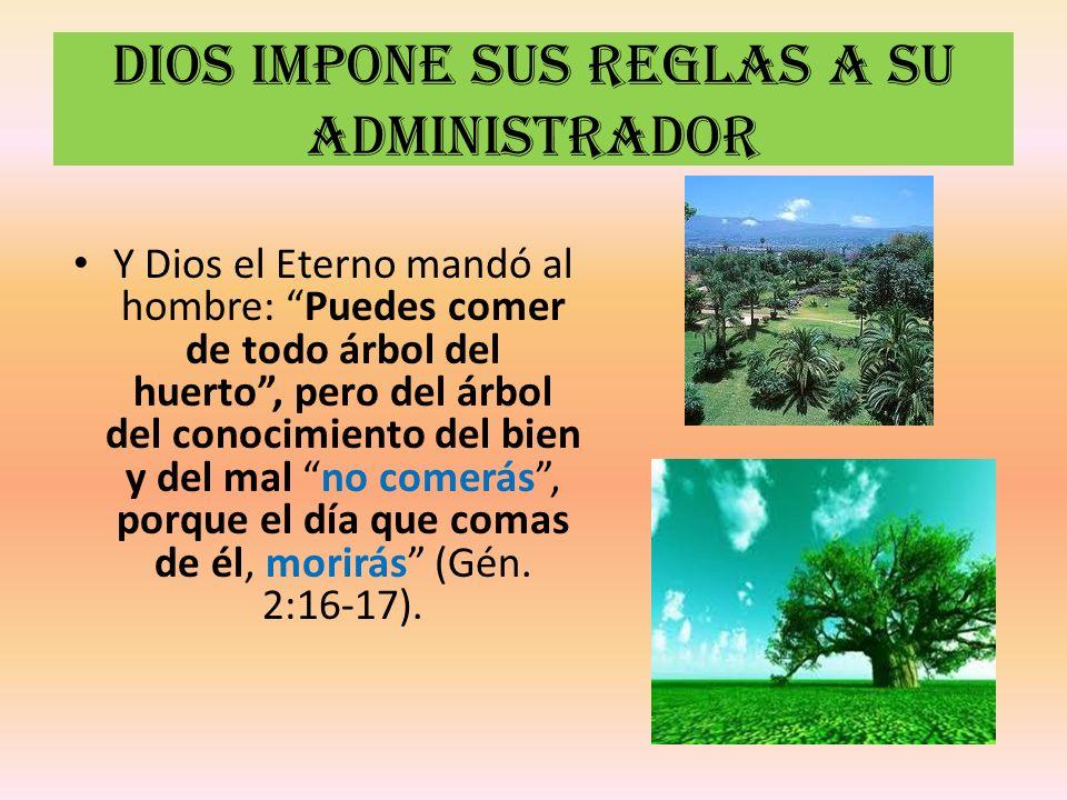 Dios impone sus reglas a su administrador Y Dios el Eterno mandó al hombre: Puedes comer de todo árbol del huerto, pero del árbol del conocimiento del