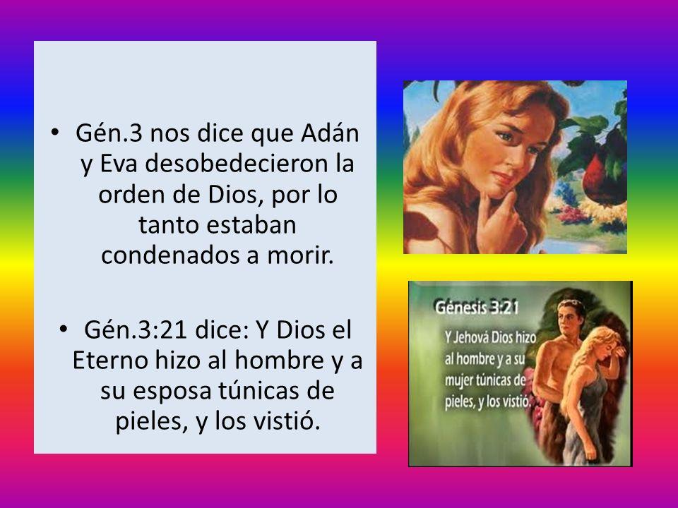Gén.3 nos dice que Adán y Eva desobedecieron la orden de Dios, por lo tanto estaban condenados a morir. Gén.3:21 dice: Y Dios el Eterno hizo al hombre