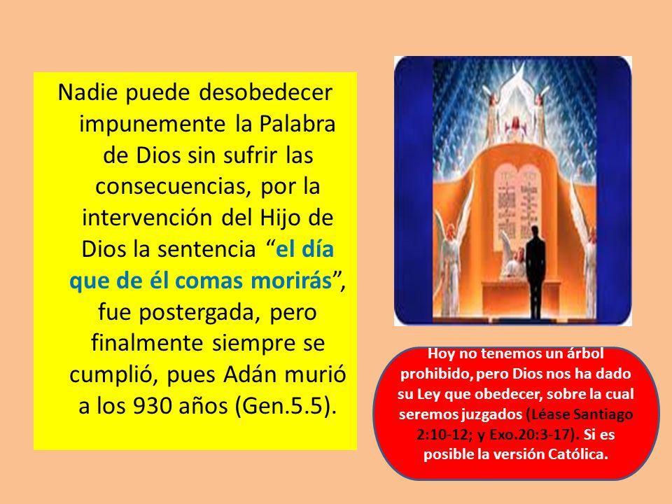 Nadie puede desobedecer impunemente la Palabra de Dios sin sufrir las consecuencias, por la intervención del Hijo de Dios la sentencia el día que de é